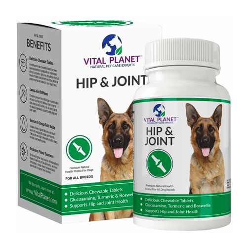 Best Hip And Joint Treats For Dogs